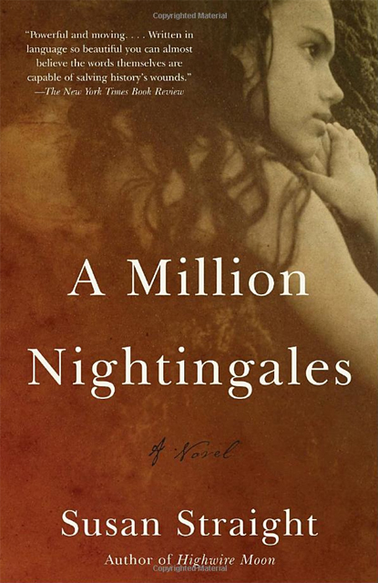 A Million Nightingales: A Novel