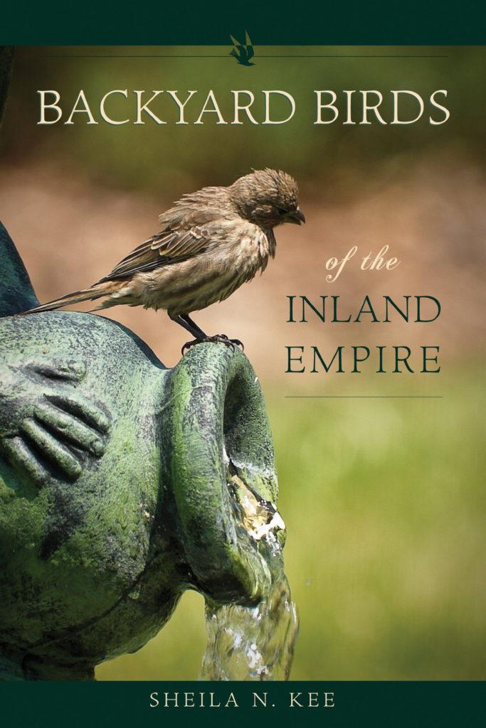 Backyard Birds of the Inland Empire